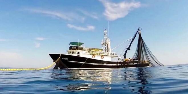 """Radionica za korisnike za mjeru IV.3. """"Stavljanje na tržište proizvoda ribarstva i akvakulture"""" i mjeru """"Produktivna ulaganja u akvakulturu"""" u Biogradu na Moru"""