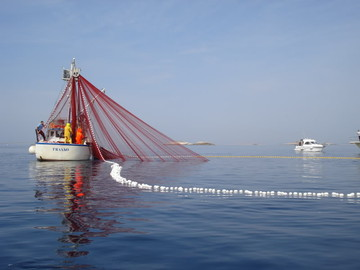 Obavijest! Privremeni prestanak ribolovnih aktivnosti pridnenim povlačnim mrežama – koćama rujan/listopad 2017. godina