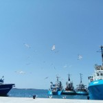 Ribarska luka