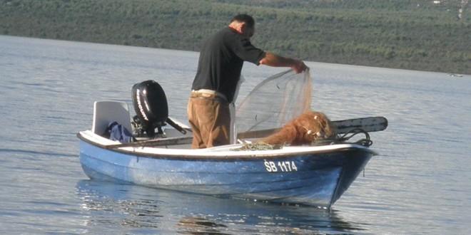 Objavljen Pravilnik o malom obalnom ribolovu