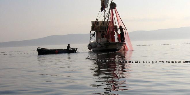 Privremeni prestanak ribolovnih aktivnosti za plivaričarski ribolov za svibanj 2019. godine