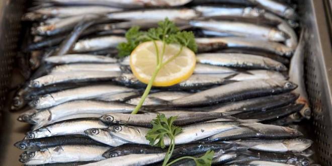 """""""Prerada proizvoda ribarstva i akvakulture"""""""