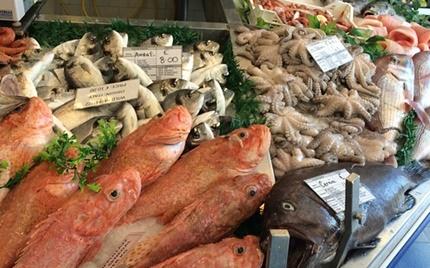 Važne informacije o registraciji ribarnica!