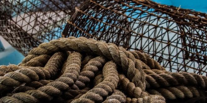 Privremena obustava plivaričarskog ribolova za svibanj 2020. za korisnike koji nisu iskoristili 6 mjeseci